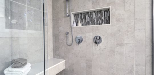Shower Stall Cleaning